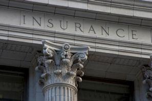 Bulldog PI, LLC Insurance Investigations-1